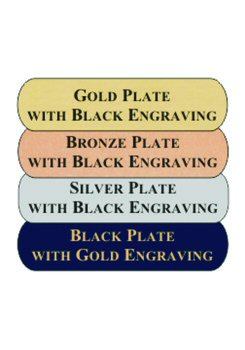 Three Inch Trophy Engraved Plate