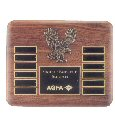 American Eagle 12 Plate Plaque