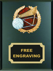 High Relief  Colored Volleyball Emblem Plaque