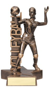 Female Volleyball Billboard Trophy