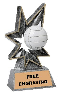 Bobble Volleyball Resin Trophy