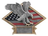 American Eagle Diamond Plate