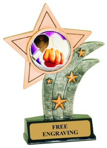 Karate Theme Resin Star Trophy