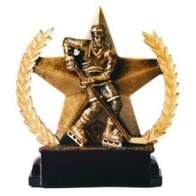 Star and Wreath Bronze Finish Hockey Award