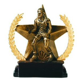 Star and Wreath Bronze Finish Wrestling Award