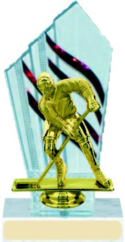 Diamondback Hockey Trophy