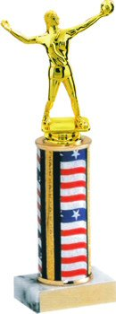 Flag Series Volleyball Trophy