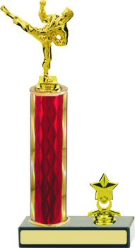 Diamond Martial Arts Trophy with Trim