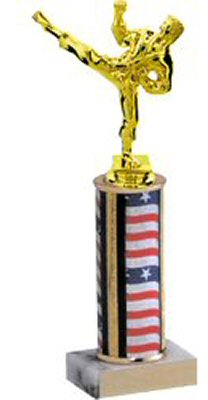 Traditional Round Column Martial Arts Trophy